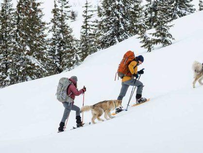 Зимове спорядження: снігоступи
