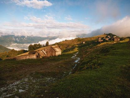 Літня одноденна мандрівка в Карпати