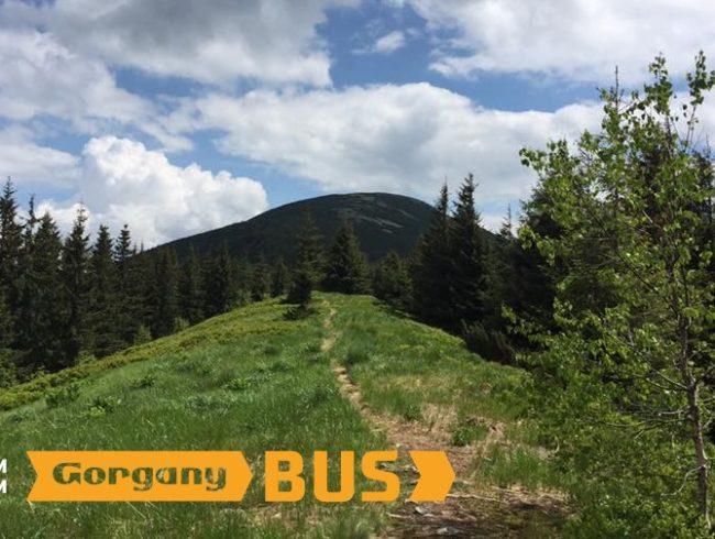 Gorgany Bus