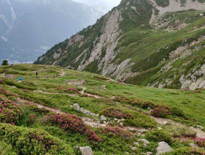 Швейцарія: трекінг в Альпах