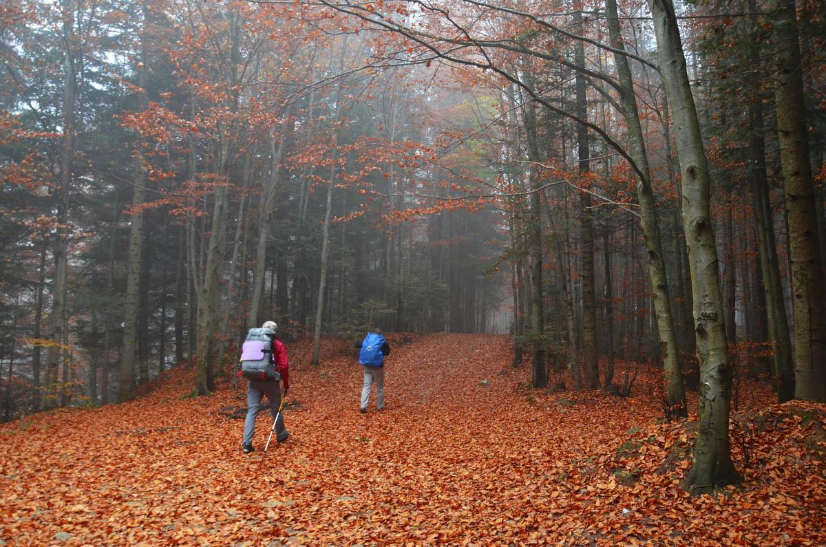 Осіння мандрівка в Карпати: що брати з собою?