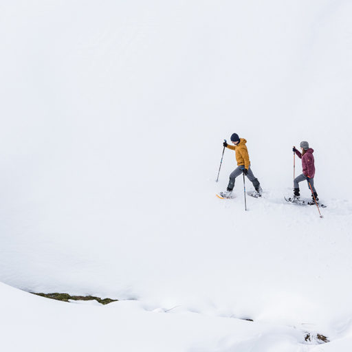 Лавини в горах