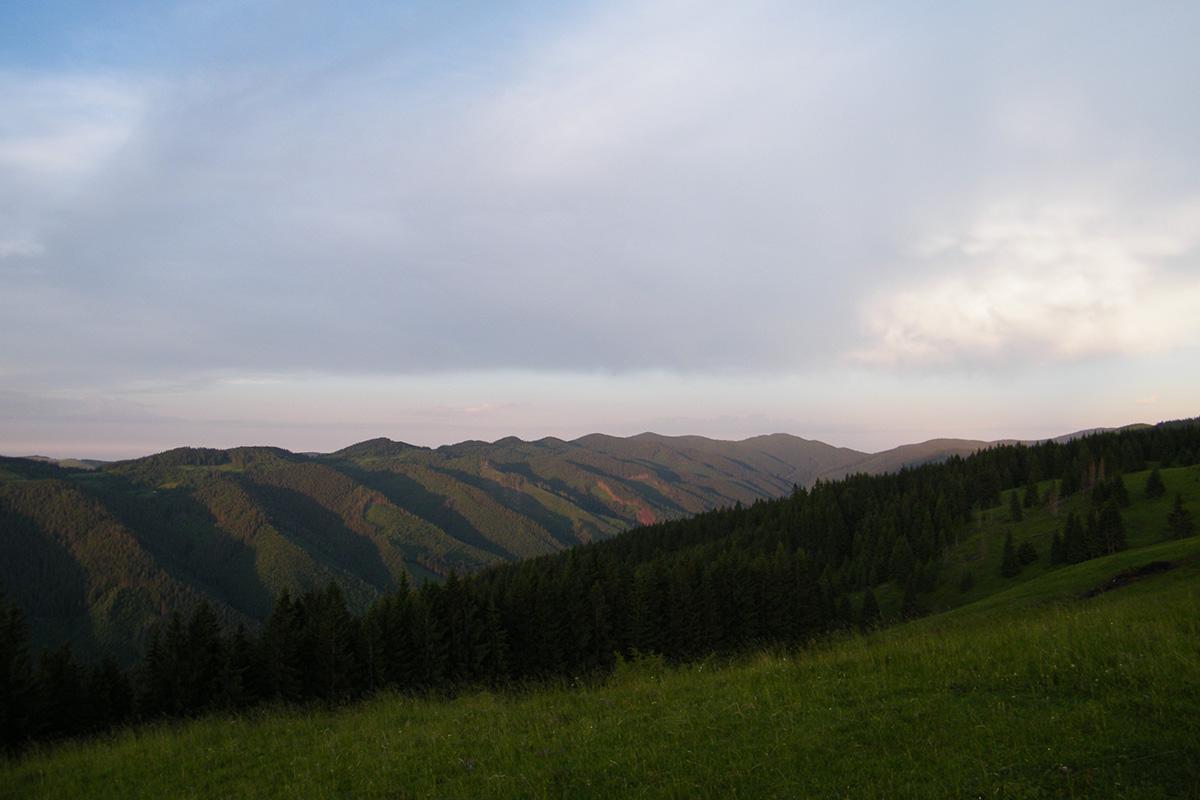 Чіохелька