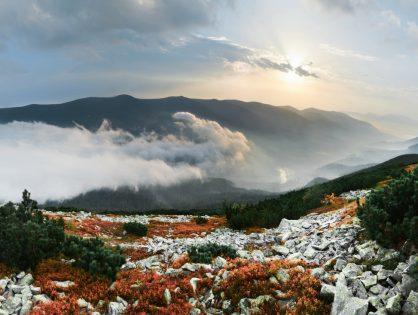 Карпатські хребти: Яйко-Ілемське та Молода