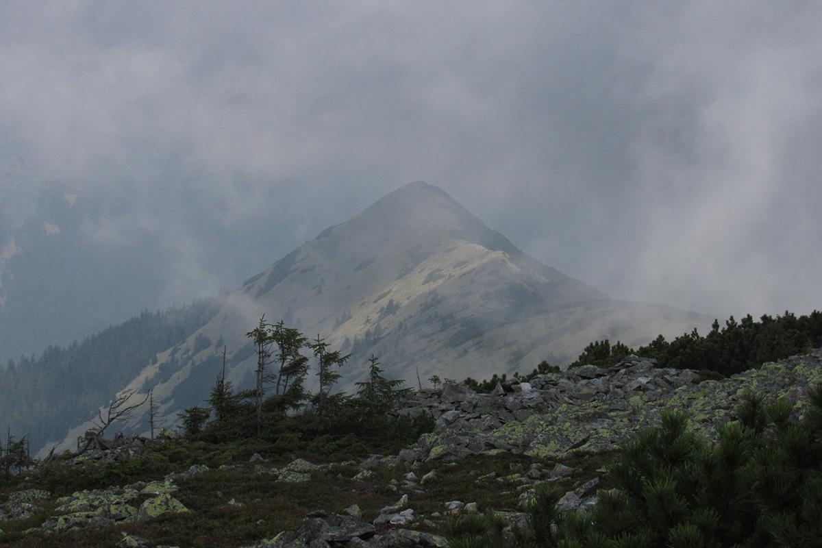 карпатські ландшафти
