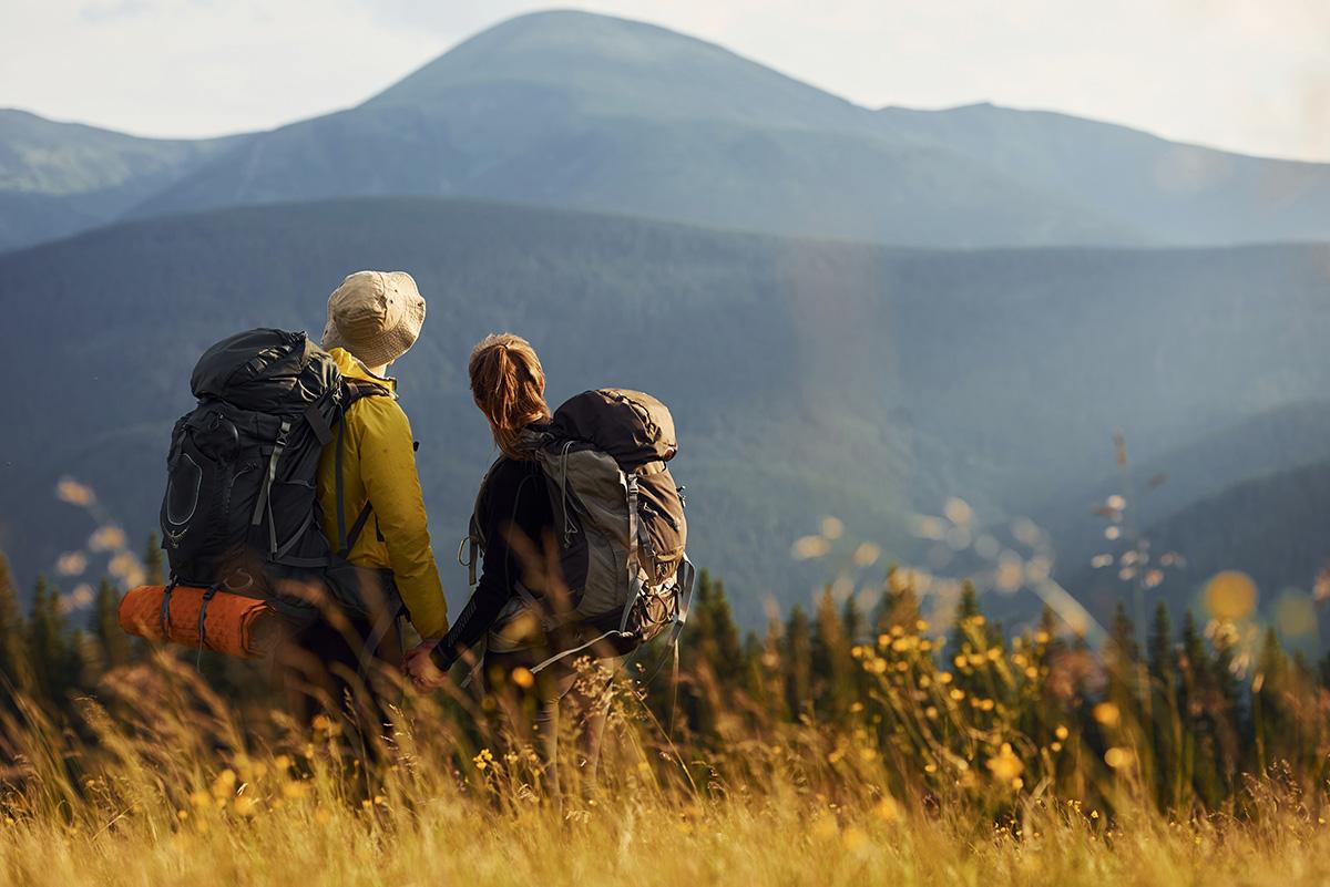 карпатські ландшафти, гірські ландшафти